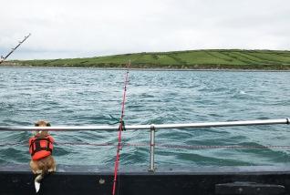 Fishing Westport - Poppy